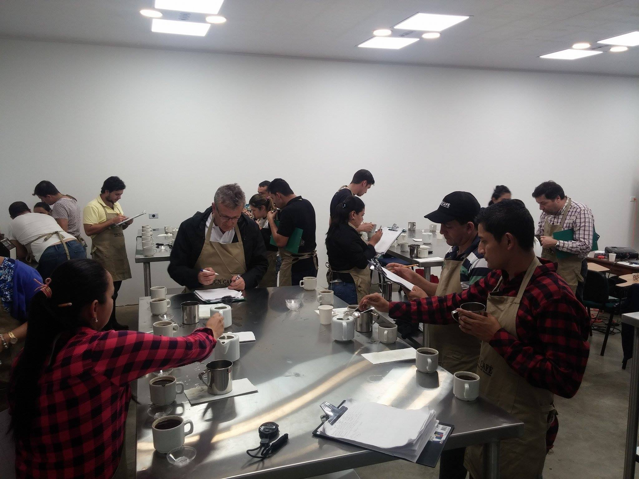 imagen portada Emprendimiento en el sector cafetero