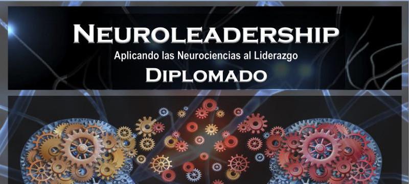 imagen portada Diplomado de Neuroliderazgo (neuroleadership)